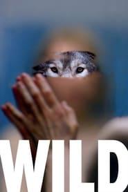 Wild (2016)