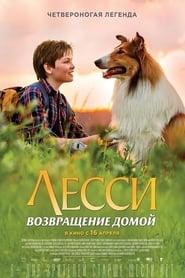 Lassie: Eine Abenteurliche Reise (2020) Online pl Lektor CDA Zalukaj
