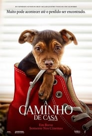 A Caminho de Casa (2019) Blu-Ray 1080p Download Torrent Dub e Leg