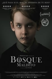 Pelicula El bosque maldito (The Hole in the Ground) completa español latino
