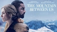 The Mountain Between Us სურათები