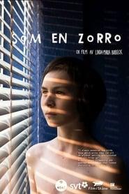 Som en Zorro 2012