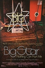 Big Star: Nothing Can Hurt Me (2013)
