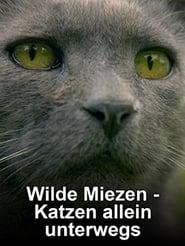 Wilde Miezen – Katzen allein unterwegs (2017) Online Cały Film Lektor PL