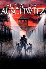 Fuga de Auschwitz – Dublado