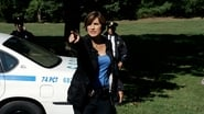 Law & Order: Special Victims Unit Season 9 Episode 7 : Blinded