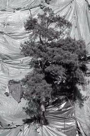 The Tree (2021)