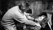 Qui a peur de Virginia Woolf ? en streaming