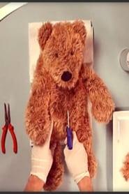 Teddy Has an Operation (2016)