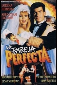 The Perfect Couple (1991)