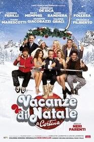 Vacanze di Natale a Cortina (2011)