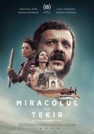 The Miracle of Tekir (2016)