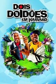 Dois Doidões em Harvard