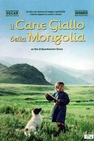 Il cane giallo della Mongolia 2005
