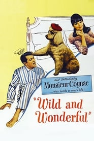 Poster Wild and Wonderful 1964