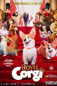 regarder Royal Corgi sur Streamcomplet