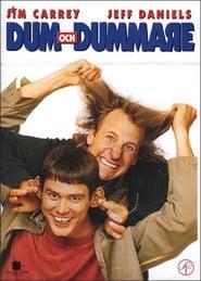 Dum & dummare