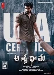 Aswathama (2020) Telugu Full Moive