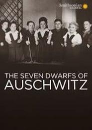 Warwick Davis: The Seven Dwarfs of Auschwitz (2013) Online Lektor PL CDA Zalukaj