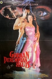 The Temptation of a Fine Woman (1993)