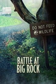 Poster Battle at Big Rock 2019