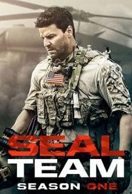 Poster SEAL Team 2021