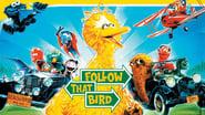 Barrio Sésamo: Sigue a ese pájaro