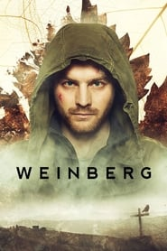 Weinberg – The Valley