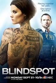 Blindspot - Season 1 Episode 1 : Pilot