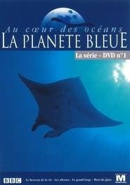 Au coeur des océans - La Planète bleue en streaming