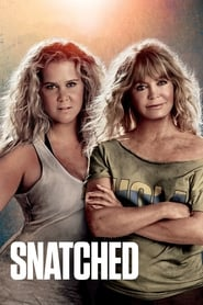Snatched (Descontroladas) (2017)