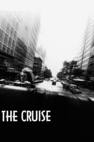 Poster for The Cruise