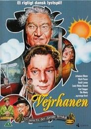Affiche de Film Vejrhanen