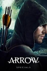 Arrow Season 0