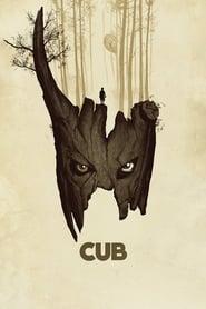 Poster Cub 2014