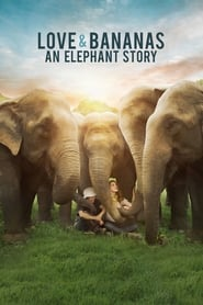 Image Love & Bananas: An Elephant Story