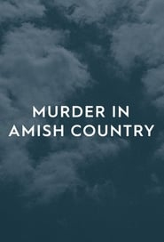 Murder in Amish Country 2019