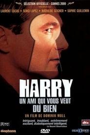 Harry, un ami qui vous veut du bien en streaming