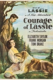 Courage of Lassie