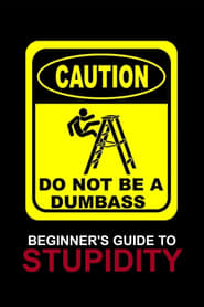Beginner's Guide To Stupidity (2022)
