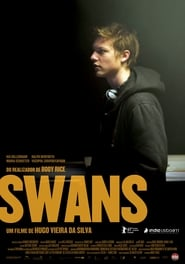 Poster Swans 2011