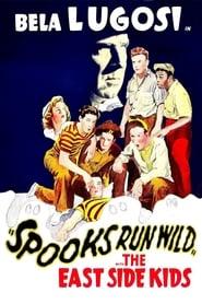 Spooks Run Wild 1941