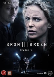 The Bridge: Saison 3 Episode 8