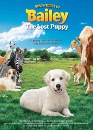 Adventures of Bailey: The Lost Puppy (2011)