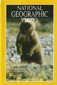 Grizzly!