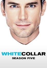 White Collar Season 5 (2013)