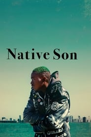 Syn swego kraju / Native Son (2019)