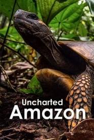 Uncharted Amazon