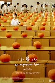 An Insignificant Affair (2020) Torrent