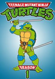 Teenage Mutant Ninja Turtles - Season 1 poster